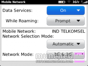 setting_3g_di_blackberry_4