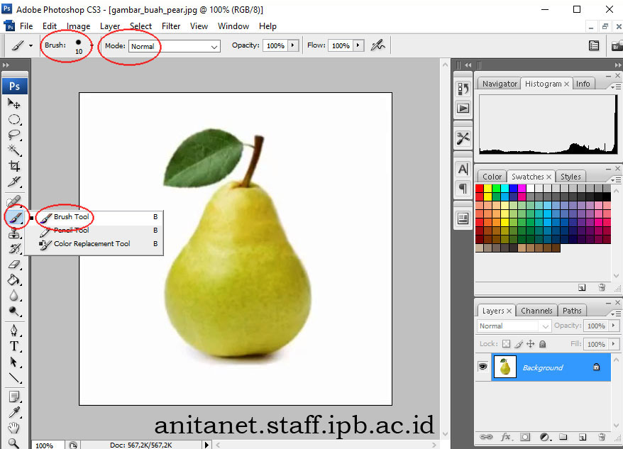 Klik icon BRUSH TOOL 10 point, mode normal